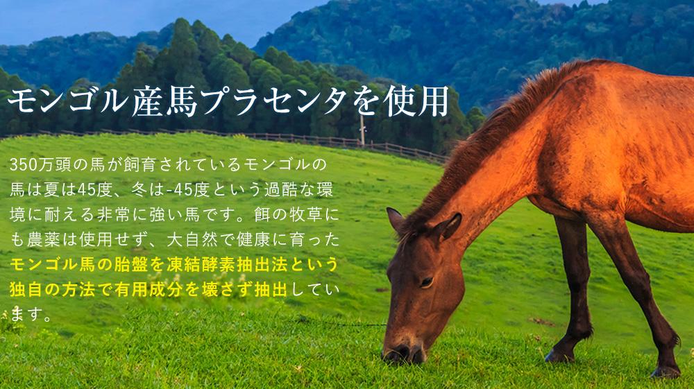 モンゴル産馬プラセンタを使用